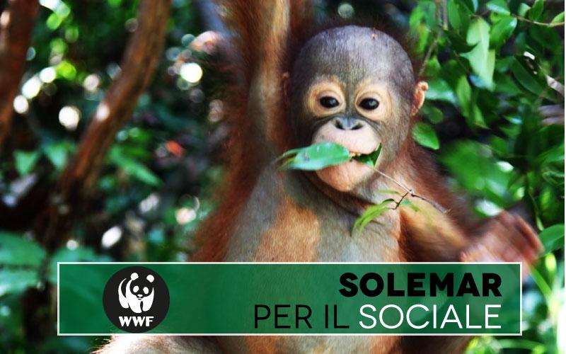 solemar academy per il sociale